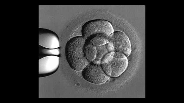Osamělá těhotná - obrázek