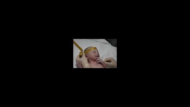 Prohlídka novorozence - obrázek