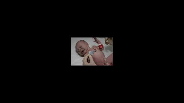 Krevní oběh novorozence po porodu - obrázek