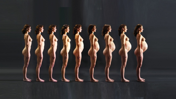 Trvání těhotenství - obrázek