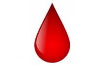 Krvácení - obrázek