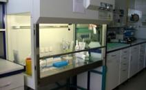 Proces odběru, zpracování a uskladnění pupečníkové krve - obrázek