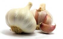 Užívání česneku v těhotenství - obrázek